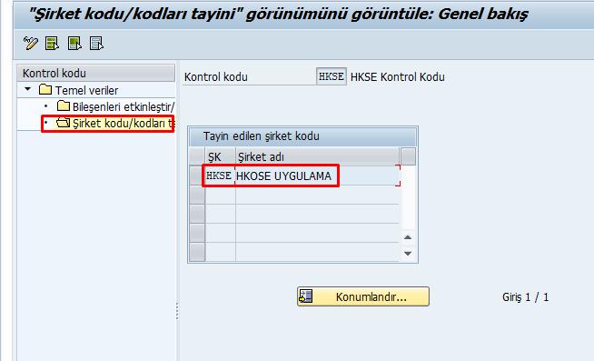 Kontrol Kodu Tayini TCode: OKKP