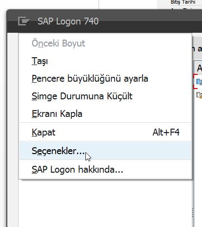 101115_1013_SAPGelitiri2.png