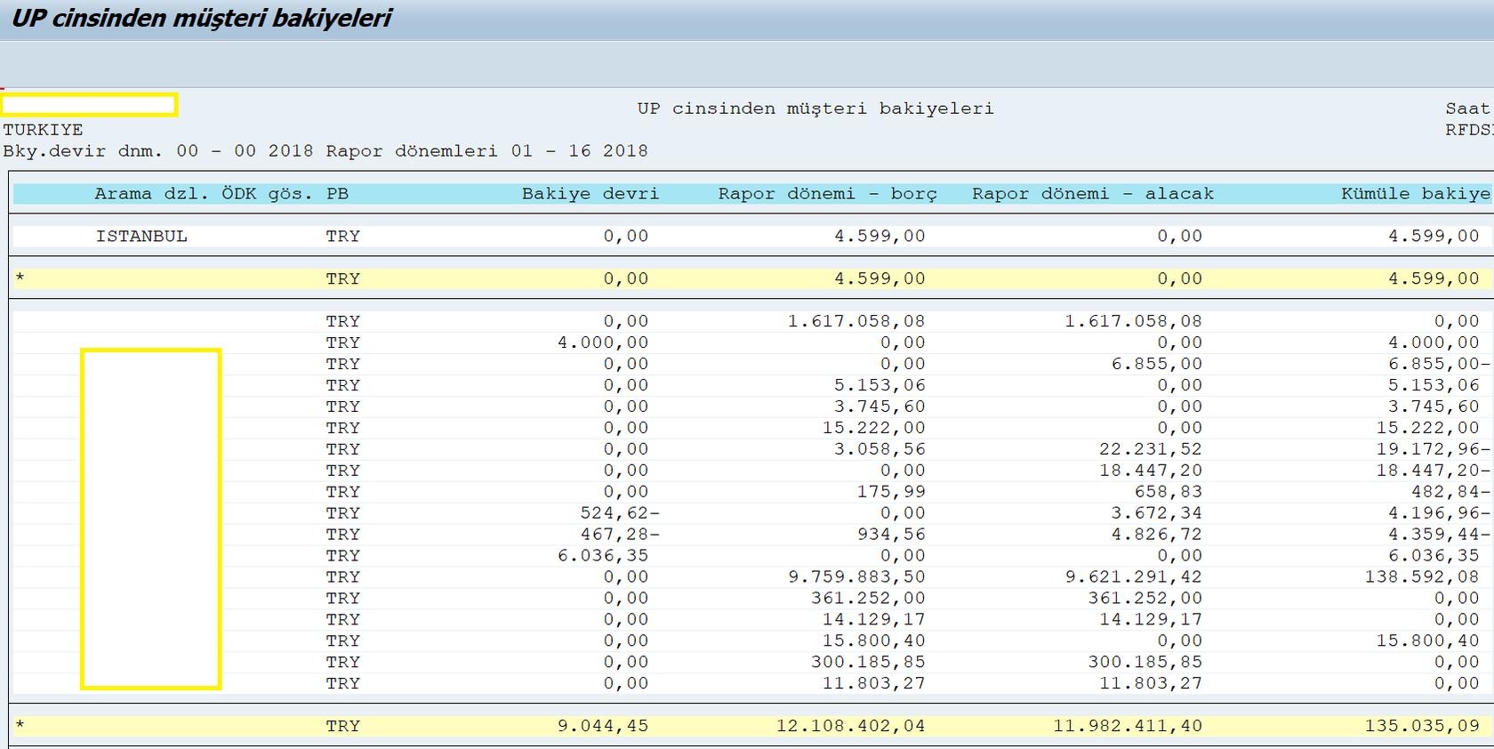 4-sap-m%C3%BC%C5%9Fteri-bakiye-listesi3.png