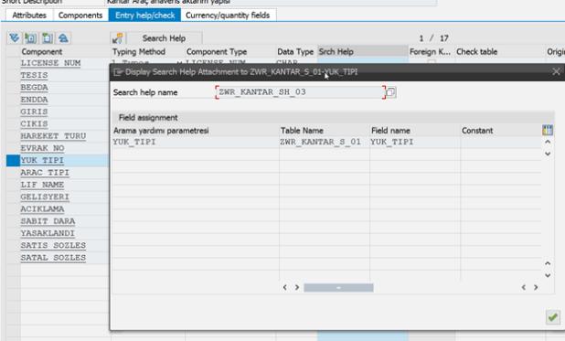 SAP Geliştirilmiş Arama Yardımı (Search Help)