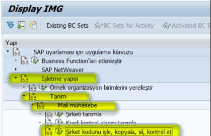 SAP Sisteminde Şirket Kodu Oluşturma
