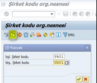 TCode: EC01 SAP-FI Şirket Kodu Oluşturma