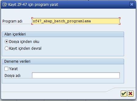 batch_input_programlama_12.png