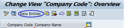 Company-Code-overview.png