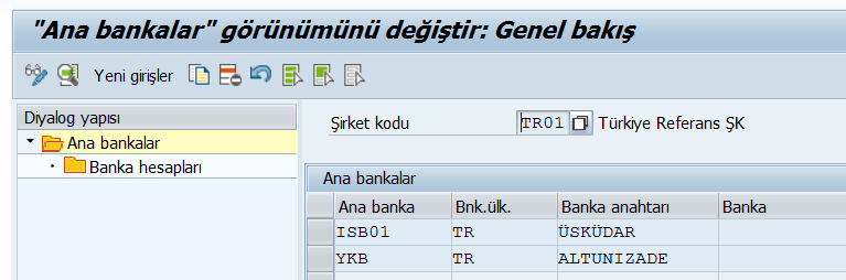 saf_fi_banka_islemleri1.png