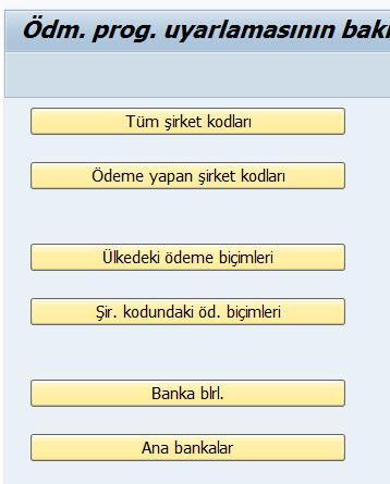 saf_fi_banka_islemleri3.png
