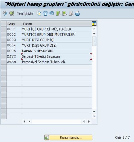 SAP%2BFI%2Bm%25C3%25BC%25C5%259Fteri%2Bhesap%2Bgrubu.png
