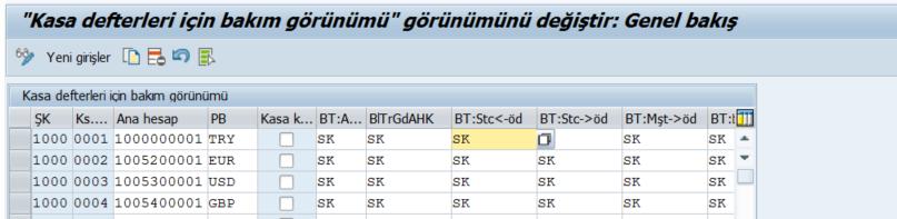 sap_fi_kasa_defteri6.png
