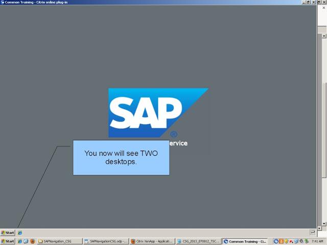 SAPNavigationCSG07.jpg