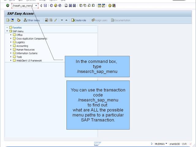 SAPNavigationSearchSAPMenu01.jpg